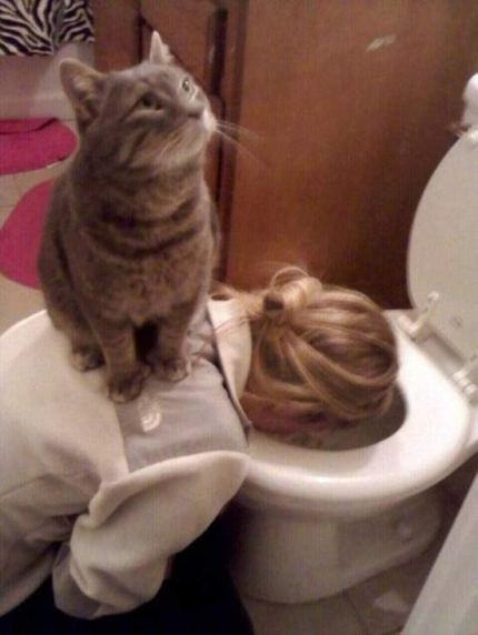 woman-throwing-up-cat-on-back-bathroom-fails-funny-pics